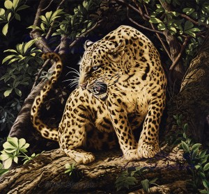Life size oil painting of an African Leopard.